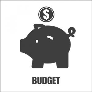 Budget Button