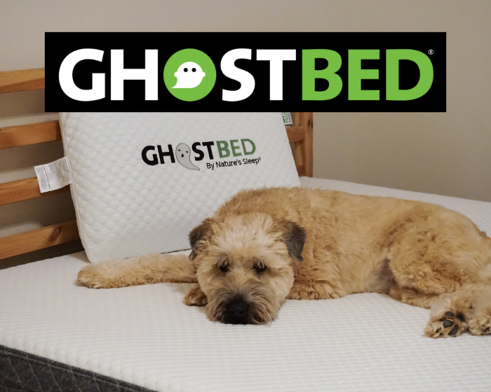 Ghostbed-title-image